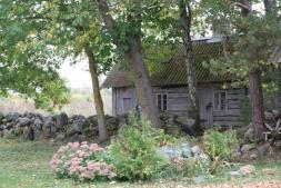 Vana saun